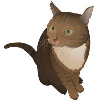 Diese süße Katze gibt es auch ab sofort im Onlineshop